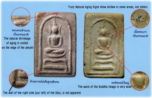 Pra Somdej Hoo Bai Sri Luang Phu To - Wat Pradoo Chimplee exhibit 1 Reference Study